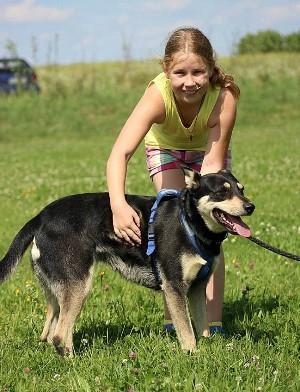 Minni, Lapplaendischer Rentierhund, mit Flo 2