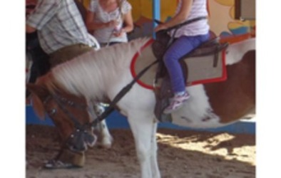 stoppt-das-ponykarussell-auf-dem-kronacher-schutzenfest_1427478071